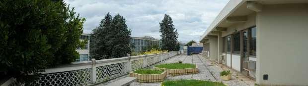 Centro Servizi Sociali (12)